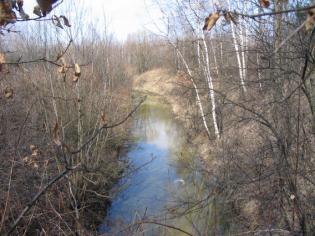 Zdjęcie 18. Bobrek. Widok źródła przy bardzo wysokim stanie wody.