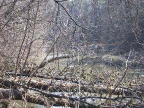 Zdjęcie 35. Biała Przemsza. Widok na rzekę przed Starymi Maczkami.