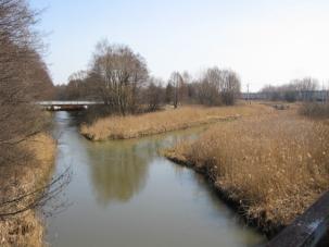 Zdjęcie 38. Biała Przemsza. Kanał Główny (z prawej).